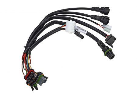 Adapterkabelbaum NGW 300 24V DC